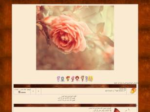الوردة2
