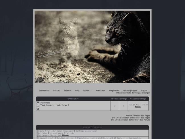 DarkLight-Kittens