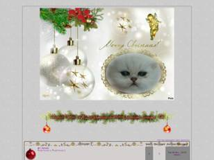 Noël blanc chat