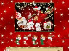 Noël sur bichons passion