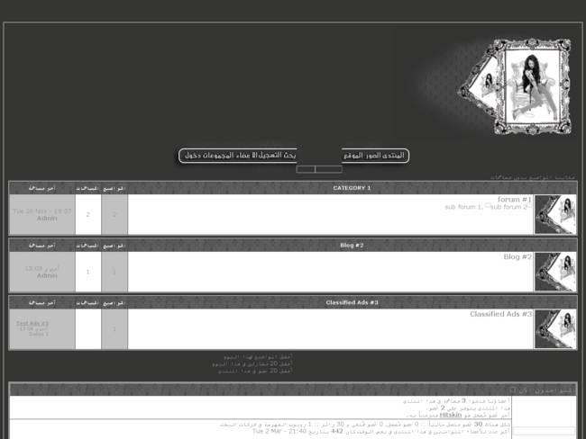 :حصرى: إستايل رمادى و أبيض رائع لمنتديات أحلى منتدى للنسخة [Phpbb 2] Preview