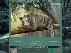 Green tiger.
