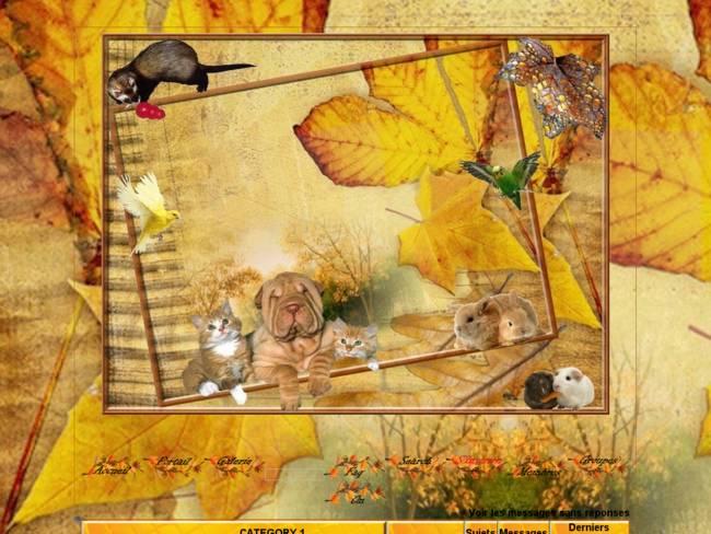 Nos amours en automne...
