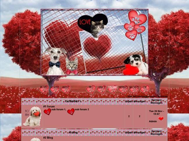 St Valentin des animaux...