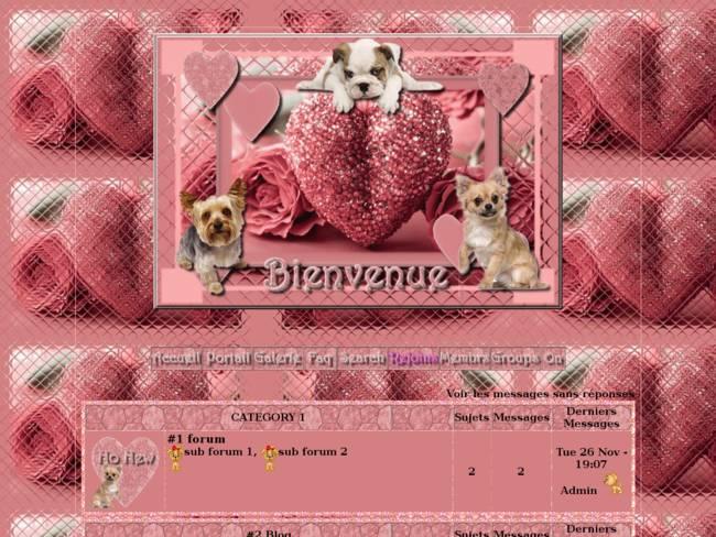 St valentin rose bonbon pour nos loulous...