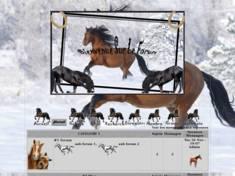 Les chevaux marron