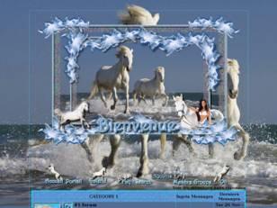Blanc cheval...