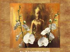 Bouddha & fleurs