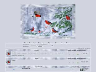 Oiseau hivernal