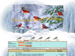 Oiseaux d'hiver jean-l...