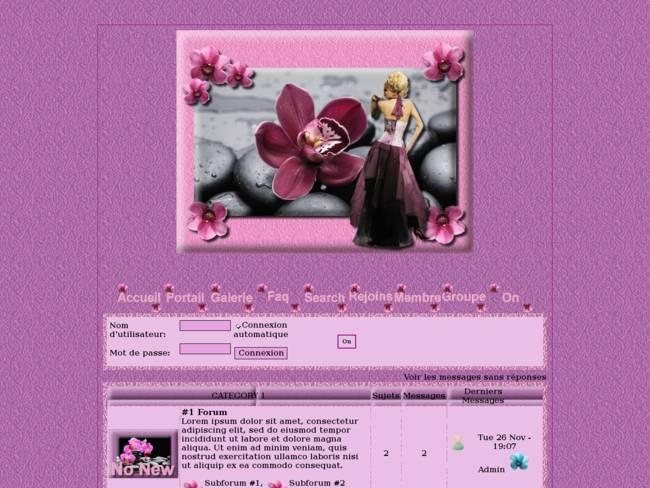 Belles orchidées...