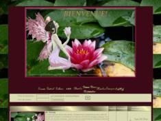 Fée lotus
