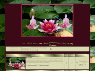 Medite lotus