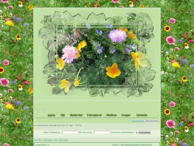 Fleurs des champs en été