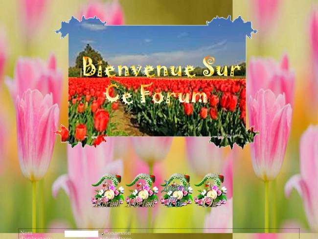 les Tulipes Jean-louis 2020
