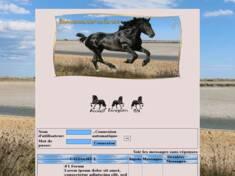 1) été chevaux noir ch...