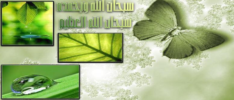 المسلم العصري