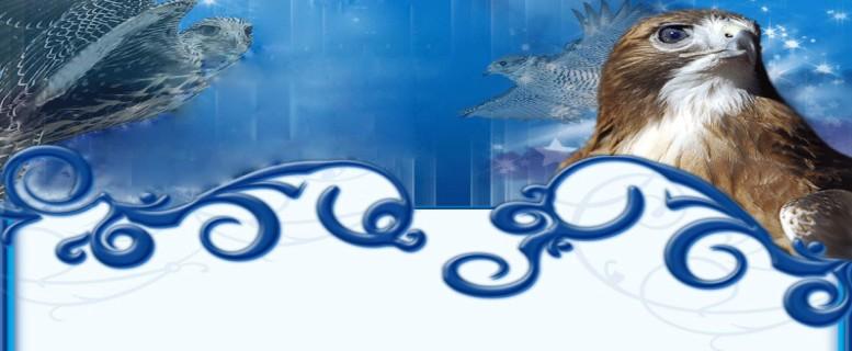 «®°·.¸.•°°·.¸.•°™ منتـديـات يبيــلــه ™°·.¸.•°°·.¸.•°®»