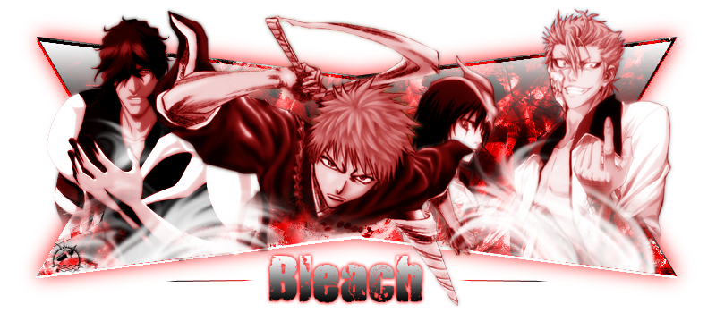 Bleach Ultimate Forever