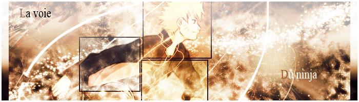 créer un forum : Le Monde De Naruto - Portail I_logo