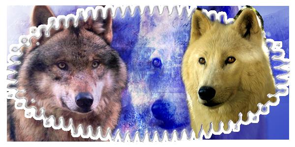 « Wolf Fantaisie ~