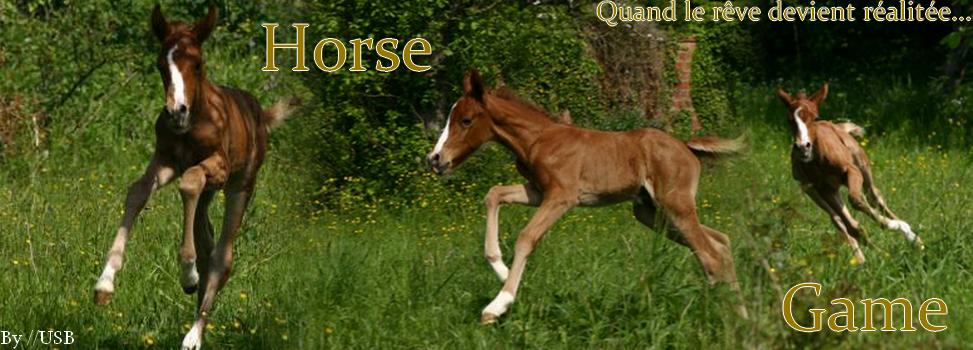 .: Horse annonces :.