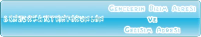 Webmaster kaynak / forum / web araçları