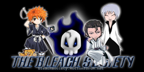 Bleach Soul Society