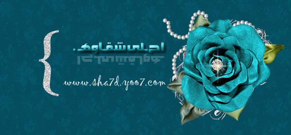 مدونة محمد الفهد