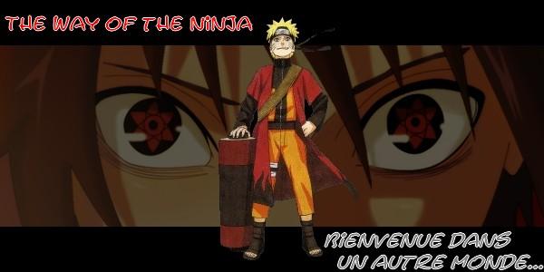 Naruto Online Phoenix S156