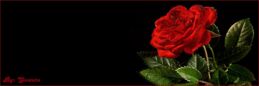 www.oussama.flipox.com