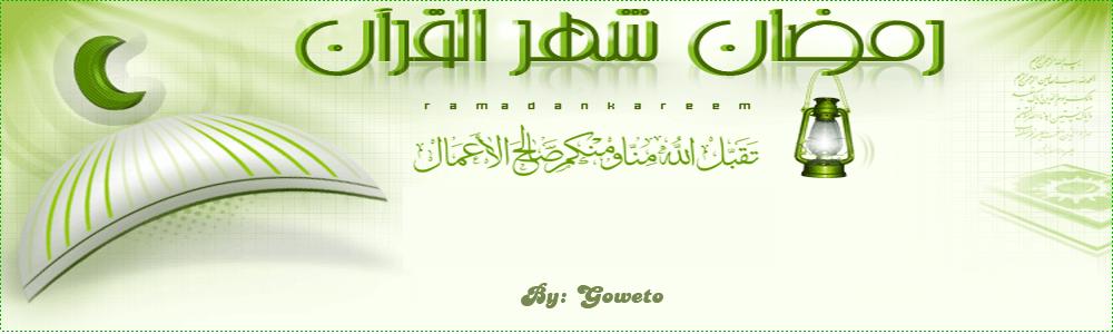 نبض الإسلام