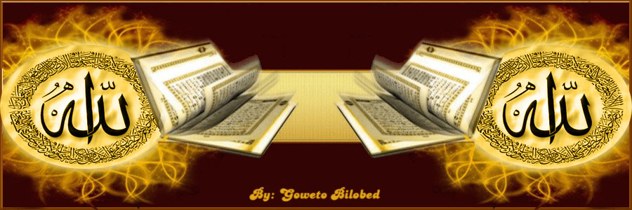 الأدب العربى