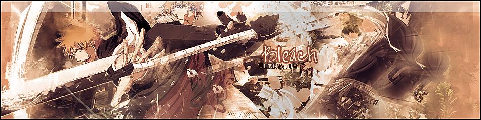BleachTR