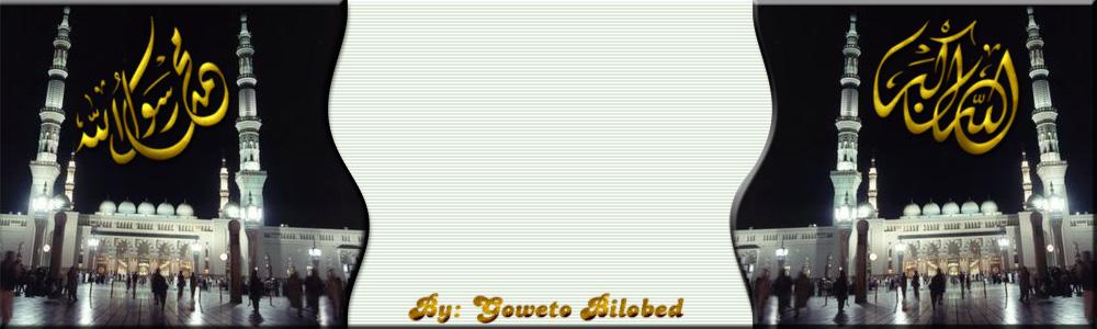 منتديات محمد مراد