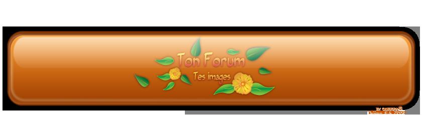 copie forum mincir yin yang