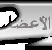 قائمة الاعضاء