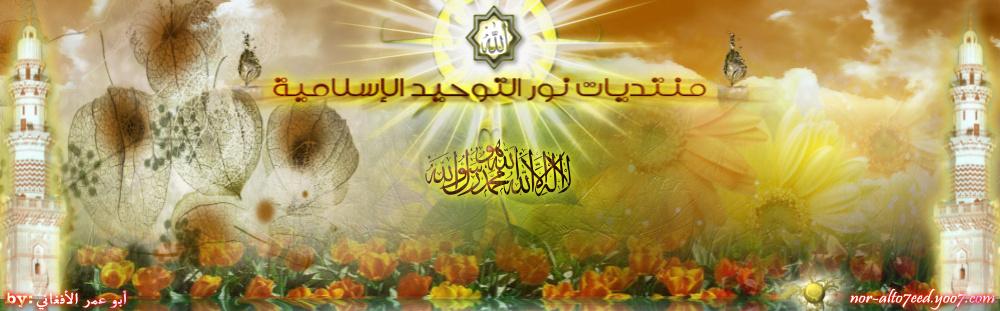 وشوشة هدهد أبو سليمان.والقوة الروحانية