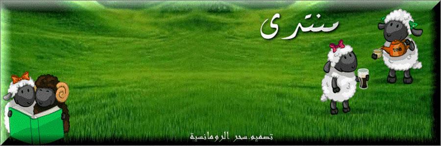 ممتدى كل العرب