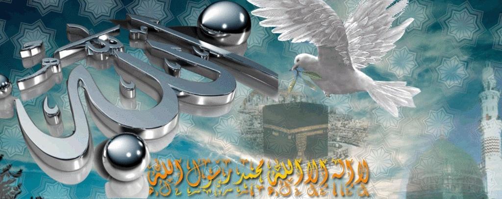 منتديات النجم محمد عبد الفتاح