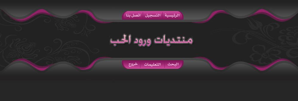 اسلام سليماني