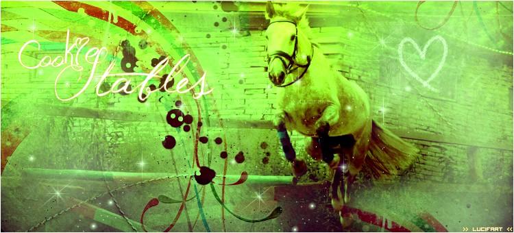 Tout sur le cheval