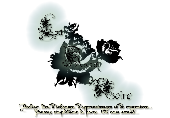 The Black Rose guilde dofus