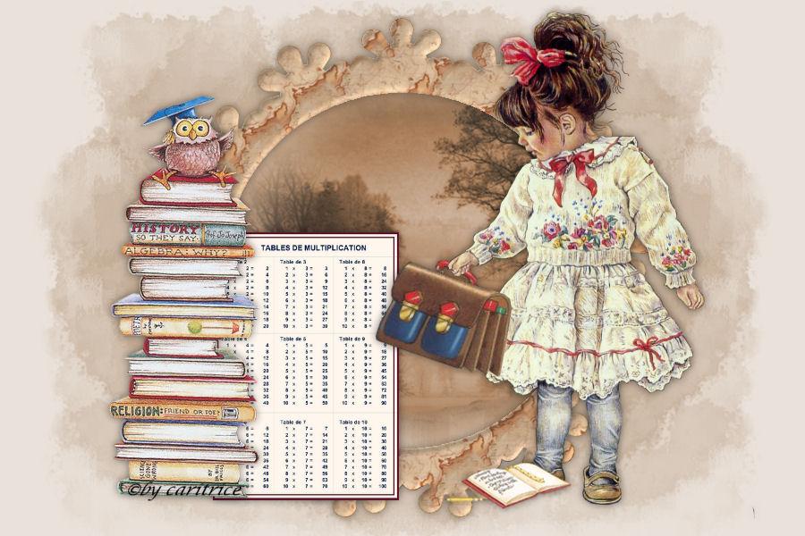 La biblioth�que de l'�cole de rang