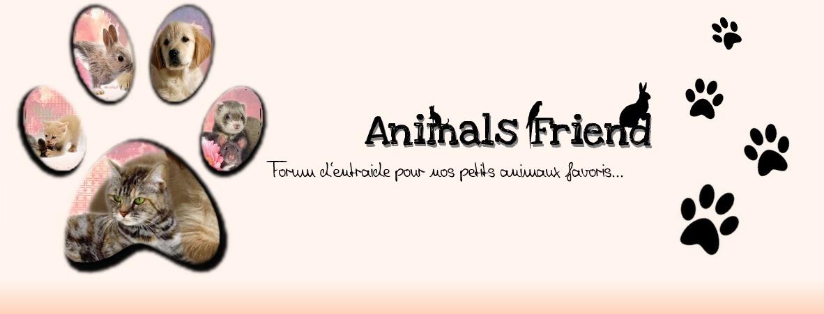 Répulsifs naturels pour animaux