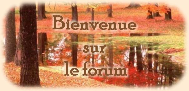 Martine-Tourisme