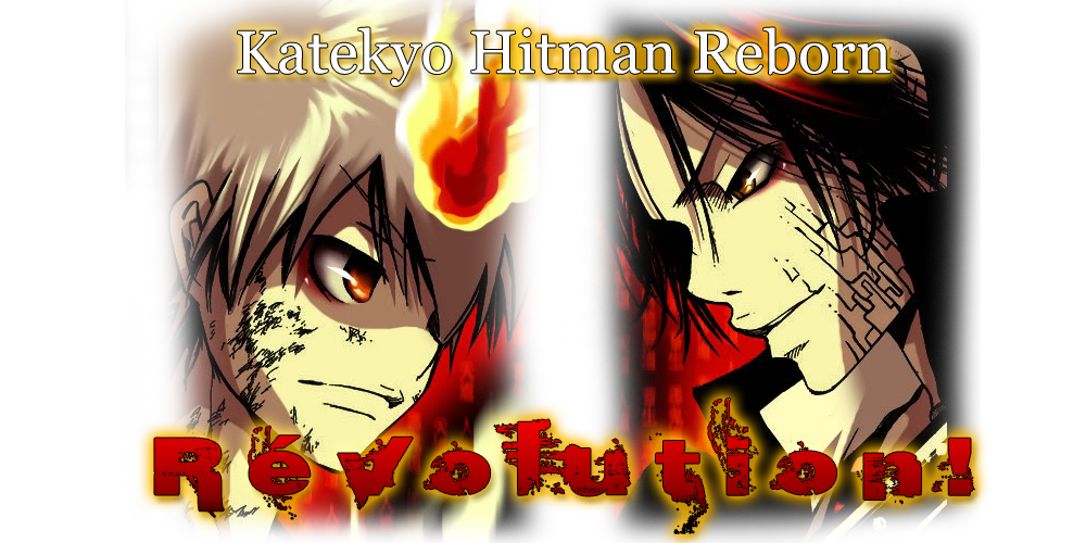 Katekyo Hitman Reborn: New Fan Arcs.