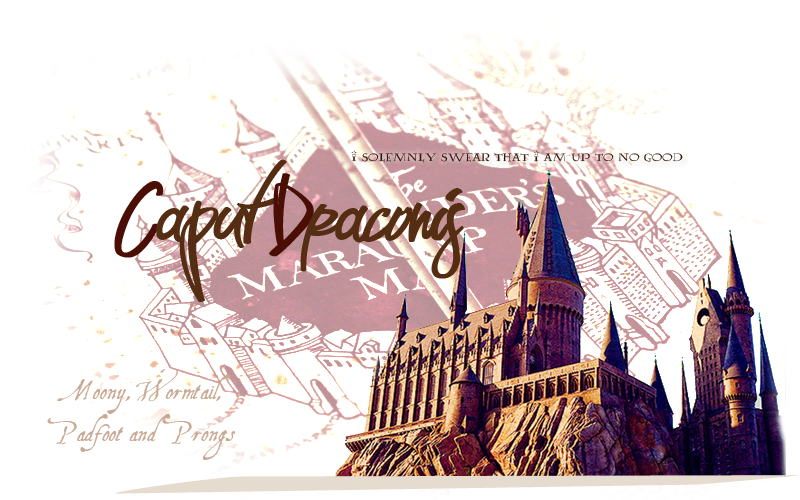 Foro de Rol Harry Potter.