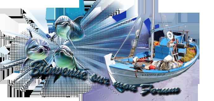 Les pêcheurs du port