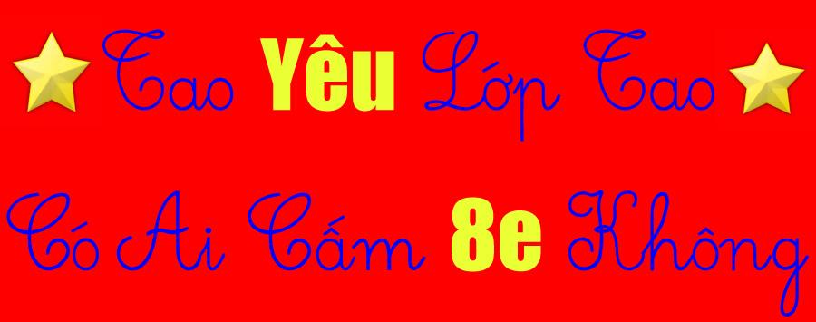 Lop 8E PTTH Ha Nam